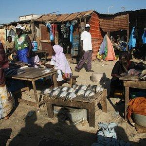 De vrouwen verkopen de vissen
