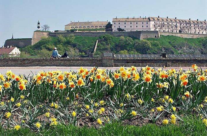 Fort Petrovaradin genomen vanaf hoofdgedeelte Novi Sad