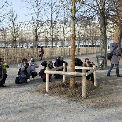 Les participants au cours photo Zoom'Up au travail !