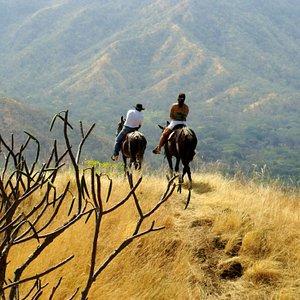 mountain top horse back