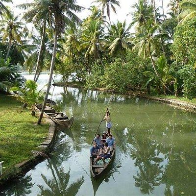 A tropical wonderland