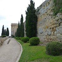 Paseig archeologic Tarragona : murallas ciclopeas