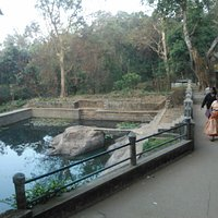 pond in temple