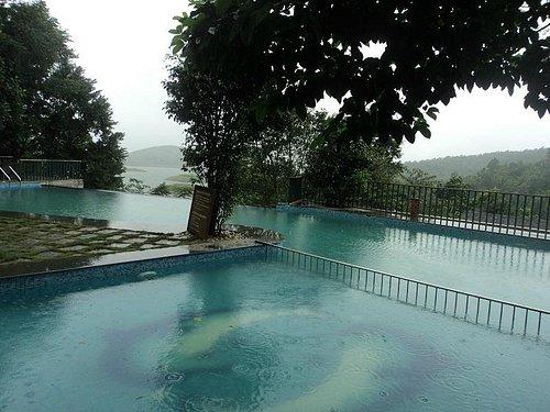 Swimming Pool of a Premium Resort in Wayanad