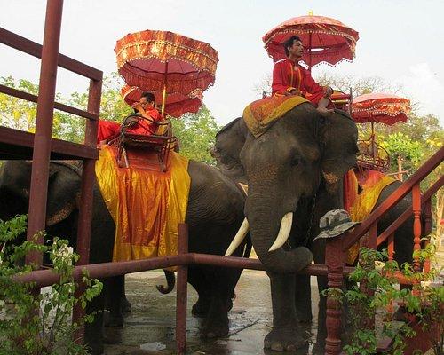お客さんを待つ象さんと象使い