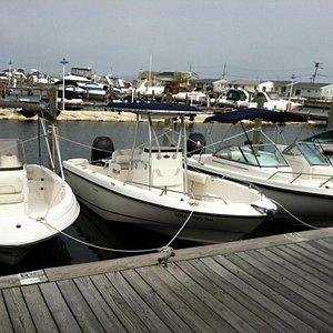 Boats available at Aqua Rentz at Ocean Beach Marina