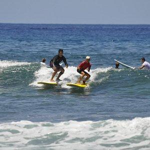 Surf with Sasha