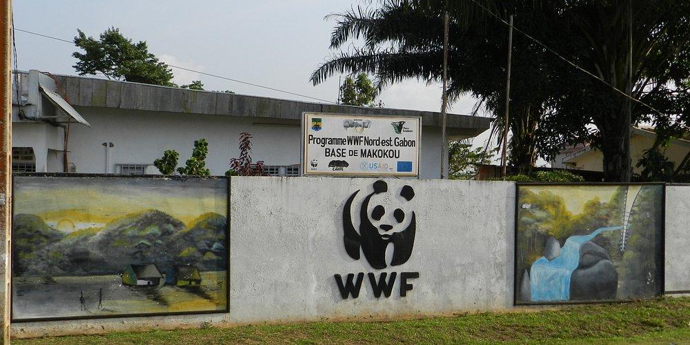 WWF Makokou office