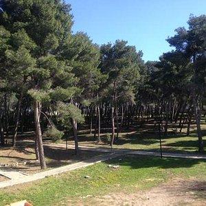 vista del parco