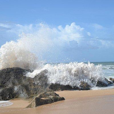 Praia Salgados, early April 13