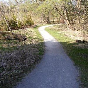 Trail at Fairy Lake