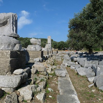 Visit to ruins from Neilsons Teos