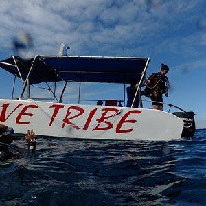 Dive Tribe Boat