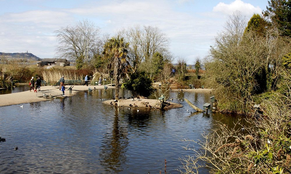 The lakes at Castle Espie
