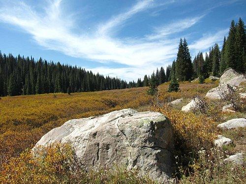 Meadow beyond Upper Falls