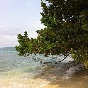 Isla Zapatilla