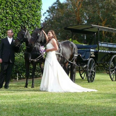 A lovely day for a wedding in the Barossa Valley 06/ 04 /2013