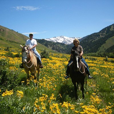 May and June's ride in the wild flowers