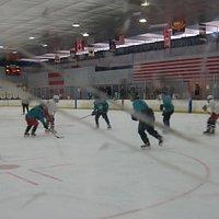 Ice hockey-one of many choices