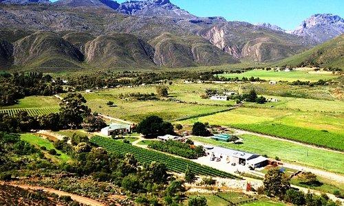 Oaksrest Farm View