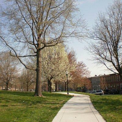 Lots of walking paths, Spring 2013