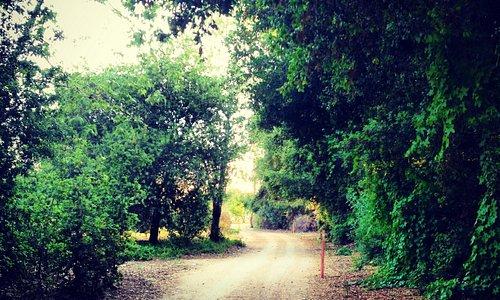 Trail Behind Hotel