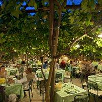 Paolino Garden