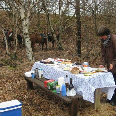 Frokosten er ved at være klar, efter en skøn ridetur i skoven på et par timer