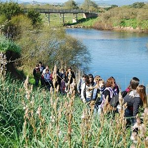 Educazione ambientale lungo il Padrongianus - Environmental education near the Padrongianus rive