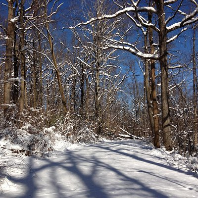 Snow shoeing in South Mountain Reservation