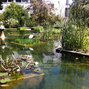 jardin botanique avril 2013