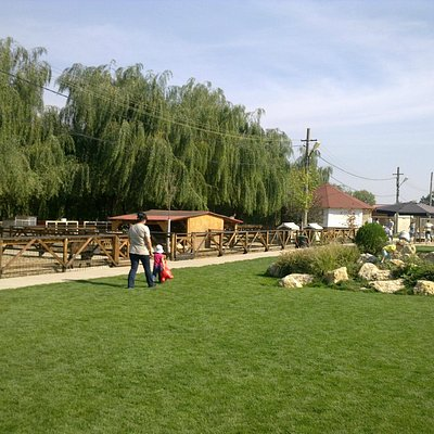 A small part of the farm