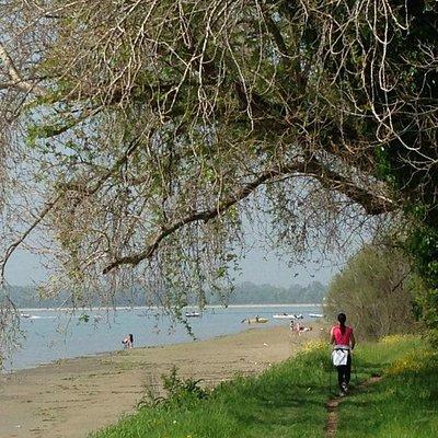 La piccola spiaggia di Sant'Erasmo