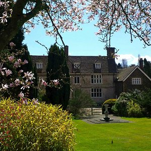 Magnolias in front of the 17th Century Manor House