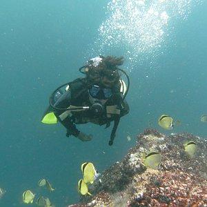 Diving is fun.
