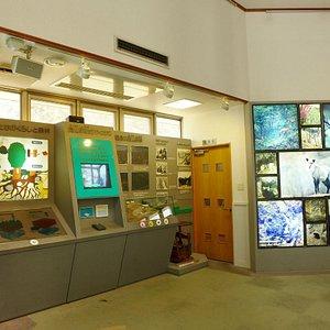 センターの内部