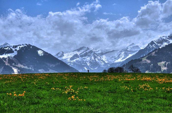 Trek from Schonried to Gstaad