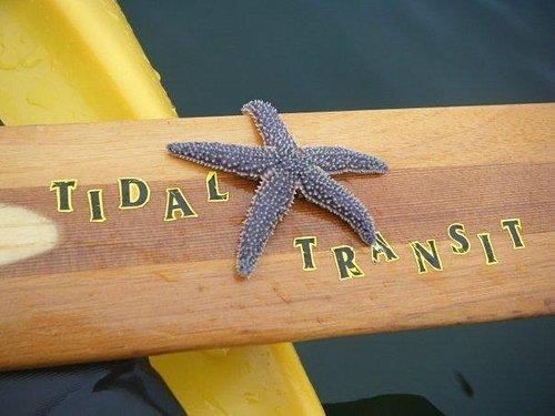 Tidal Transit