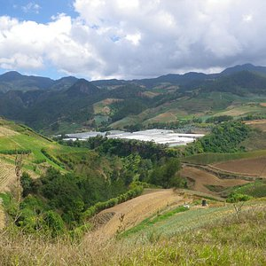View up valley to falls and rose greenhouses