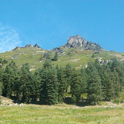 Mount Ashland!