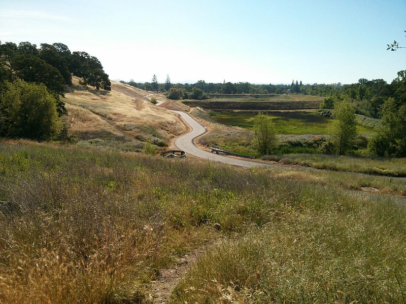 Looking from within Miners Ravine toward Sierra College Blvd