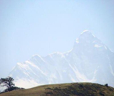 Nanda devi seen from Gorson meadows Auli.