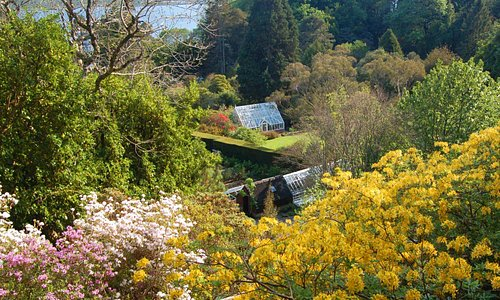 Springtime from the Cliff Path