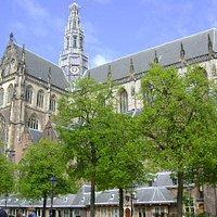 Cathedral of Sint Bavo, Haarlem, Paises Bajos.