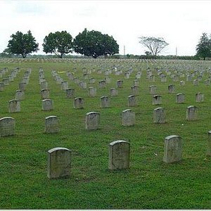 View of cemetery