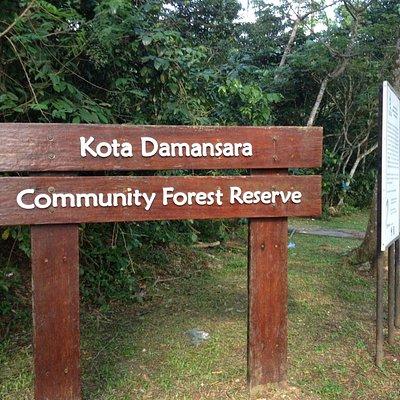 kota damansara forest park