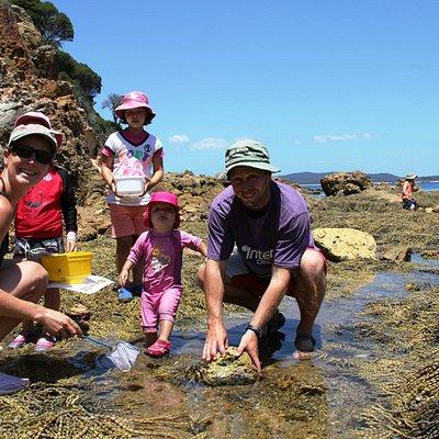 Families enjoying a Rocky Shore Ramble