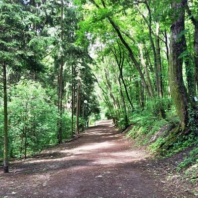 Trail at Horsky park