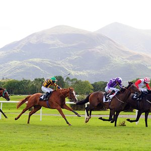 Killarney Racecourse