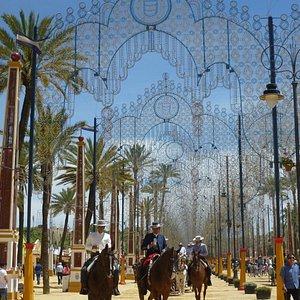 luces y caballos